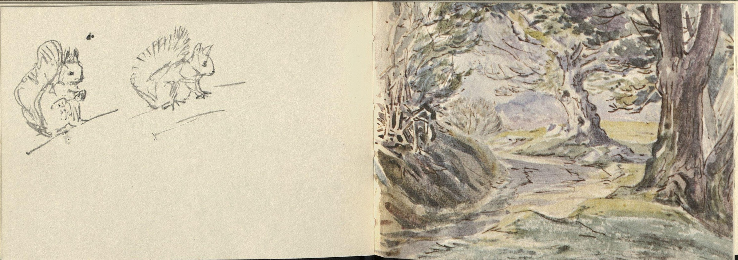 Interior of Beatrix Potter's 1903 Derwentwater Skechbook (facsimile)