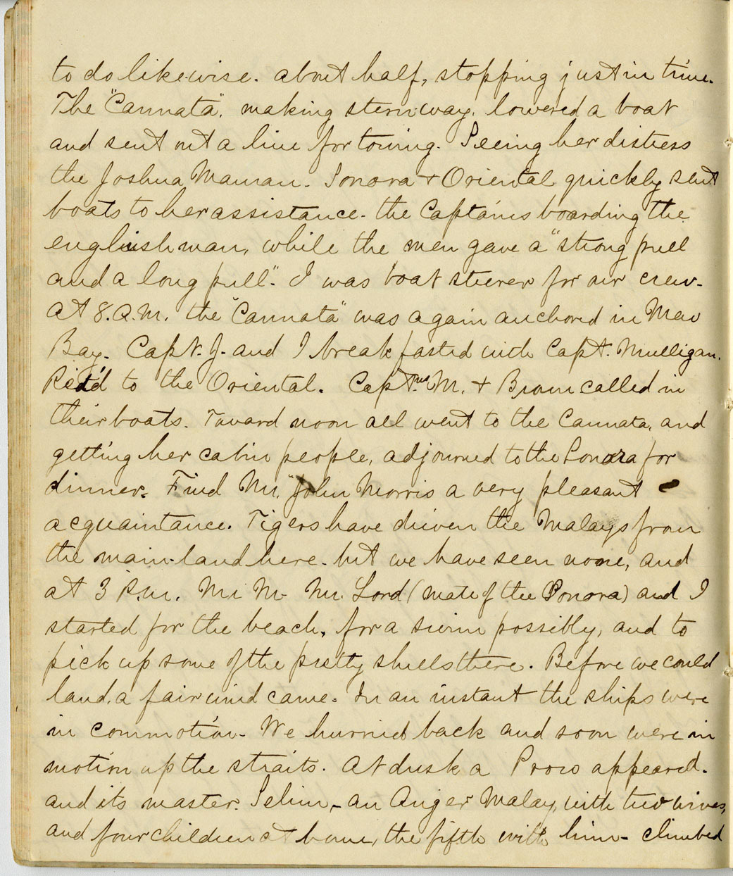 Cornelius Gold Journal, Page 27