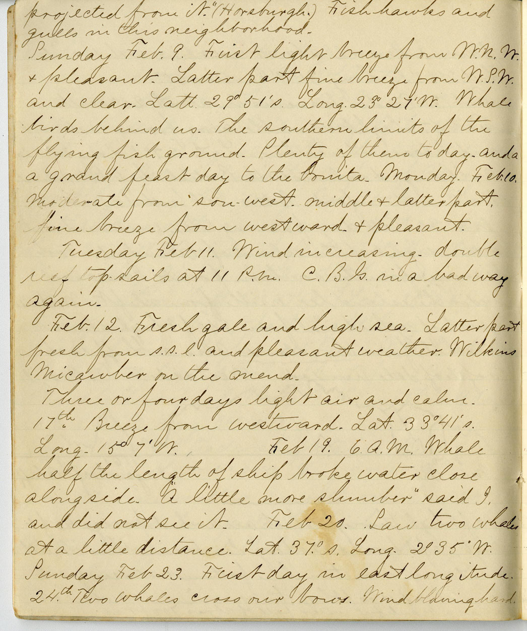 Cornelius Gold Journal, Page 7